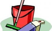 ¿Cómo cuidar a los chicos y a las mascotas de una intoxicación con productos de limpieza?