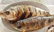 Una porción de pescado diaria beneficia al corazón
