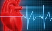 """Analizan el rol del """"colesterol bueno"""" en la protección del infarto"""
