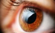 Lo último en salud visual: lentes intraoculares multifocales