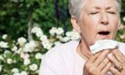 Realizan un conteo de pólenes para evitar alergias en primavera
