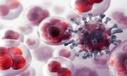 ¿El cáncer deja de ser terminal?