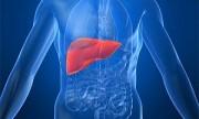 Presentan novedosos tratamientos contra la hepatitis C