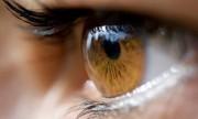 Cómo cuidar la vista con una dieta sana