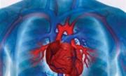 ¿Cómo sé si mi corazón funciona bien?