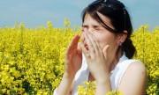 Cómo dar batalla a los estornudos