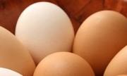 Desmienten que el huevo suba el colesterol y revelan qué alimentos causan más alergias