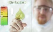 Colesterol, la amenaza indolora: una guía para poder controlarlo