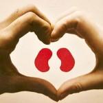 Recomiendan prevenir enfermedades renales desde la niñez