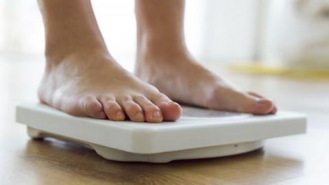 gusano-gen-combatir-obesidad
