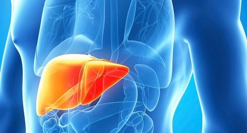 campama-gratuita-deteccion-hepatitis-c
