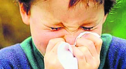 temporada-alta-alergia-ninos